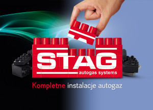 stag_klocki